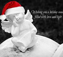 Season's Greetings - Christmas Card by Scott Mitchell