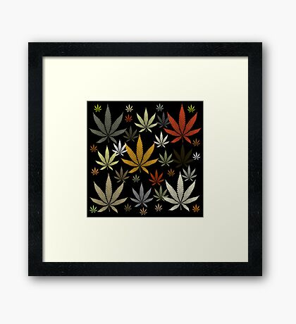 Marijuana Cannabis Weed Multicolored Black Background Framed Print