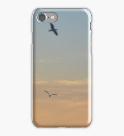 Birds at Sunset iPhone Case/Skin