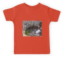 Purity and Pollution Kids Tee