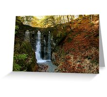 Schwaz Waterfalls! Greeting Card