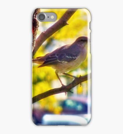 Mockingbird Enjoying The Autumn Day iPhone Case/Skin