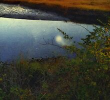 Mirrored Moon by RC deWinter