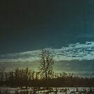 Winter's Glow by Valerie Rosen