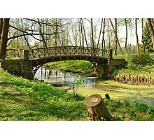 The old bridge in park Photographic Print