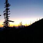 Washington Sunset by grosus15