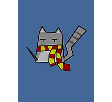 Gryffindor Kitty Photographic Print