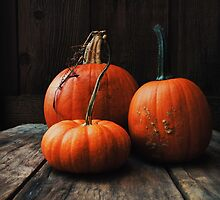 Three Pumpkins by Olivia Joy StClaire