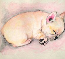 Sleeping Frenchie by Liz Thoresen