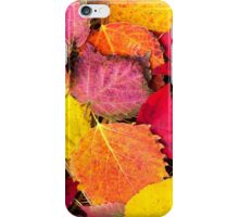 Autumn Leaves Abstract iPhone Case/Skin