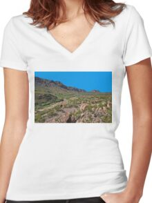 Desolate Women's Fitted V-Neck T-Shirt