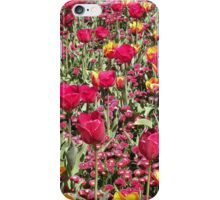 A Riot of Colour ! iPhone Case/Skin