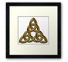 Bee Gold Celtic Triskel Framed Print