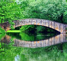 Summer landscape with a bridge by Maryna Gumenyuk