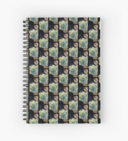 Echeveria setosa flower Spiral Notebook