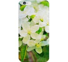 Romantic vintage mixed media floral iPhone Case/Skin