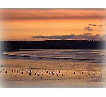 Golden Evening in Instow Photographic Print
