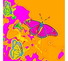 Psychedelic Butterflies  Photographic Print