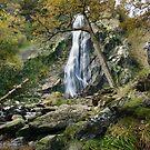 Powerscourt Waterfall & photographers  by Martina Fagan