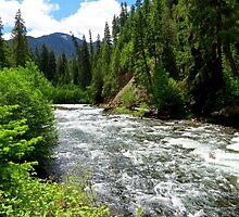 Canoe Break along the  Malheur River, Oregon by trueblvr