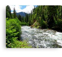 Canoe Break along the  Malheur River, Oregon Canvas Print