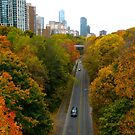 Autumn Drive up the Rosedale Valley Road by MarianBendeth