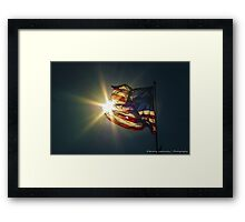 Sun & American Flag Framed Print