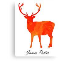 James Potter Canvas Print
