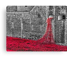 Cascade Of Poppies Canvas Print