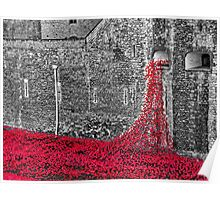 Cascade Of Poppies Poster