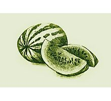 Drawing of watermelon. Illustration  Photographic Print