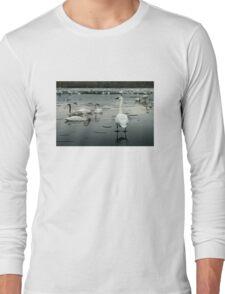 Trumpeter Swans of Heber Springs, AR - 1 Long Sleeve T-Shirt