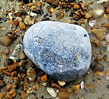 Brighton Pebble by Creativity for Sanctuary for Kids
