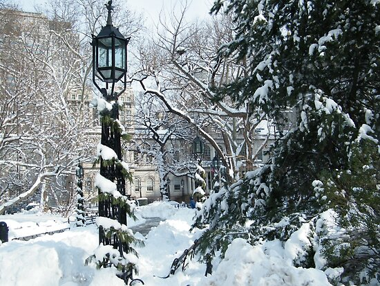 City Hall Park in Snow, New York by lenspiro