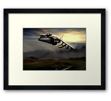 Low level harrier Framed Print