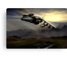 Low level harrier Canvas Print