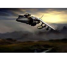 Low level harrier Photographic Print