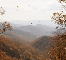 {windy autumn day} by Pursuing the Beauty Photography