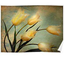 Dutch Tulips Poster