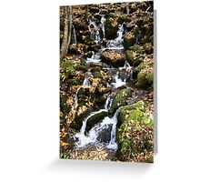 {autumn water I} Greeting Card