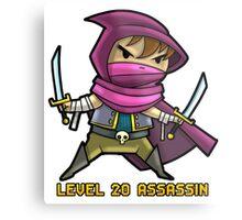 Level 20 Assassin Metal Print