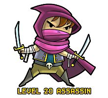 Level 20 Assassin Photographic Print