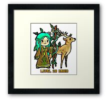 Level 20 Druid Framed Print