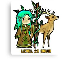 Level 20 Druid Canvas Print