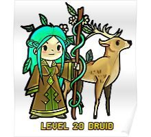 Level 20 Druid Poster