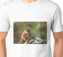 Red Squirrel on Old Tree Unisex T-Shirt