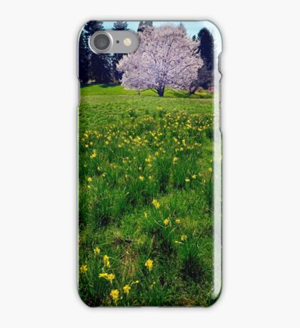Hawthorn and Daffodils iPhone Case/Skin