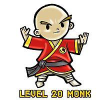 Level 20 Monk Photographic Print
