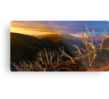 Mt Hotham Brush Metal Print