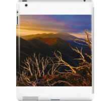 Mt Hotham Brush iPad Case/Skin